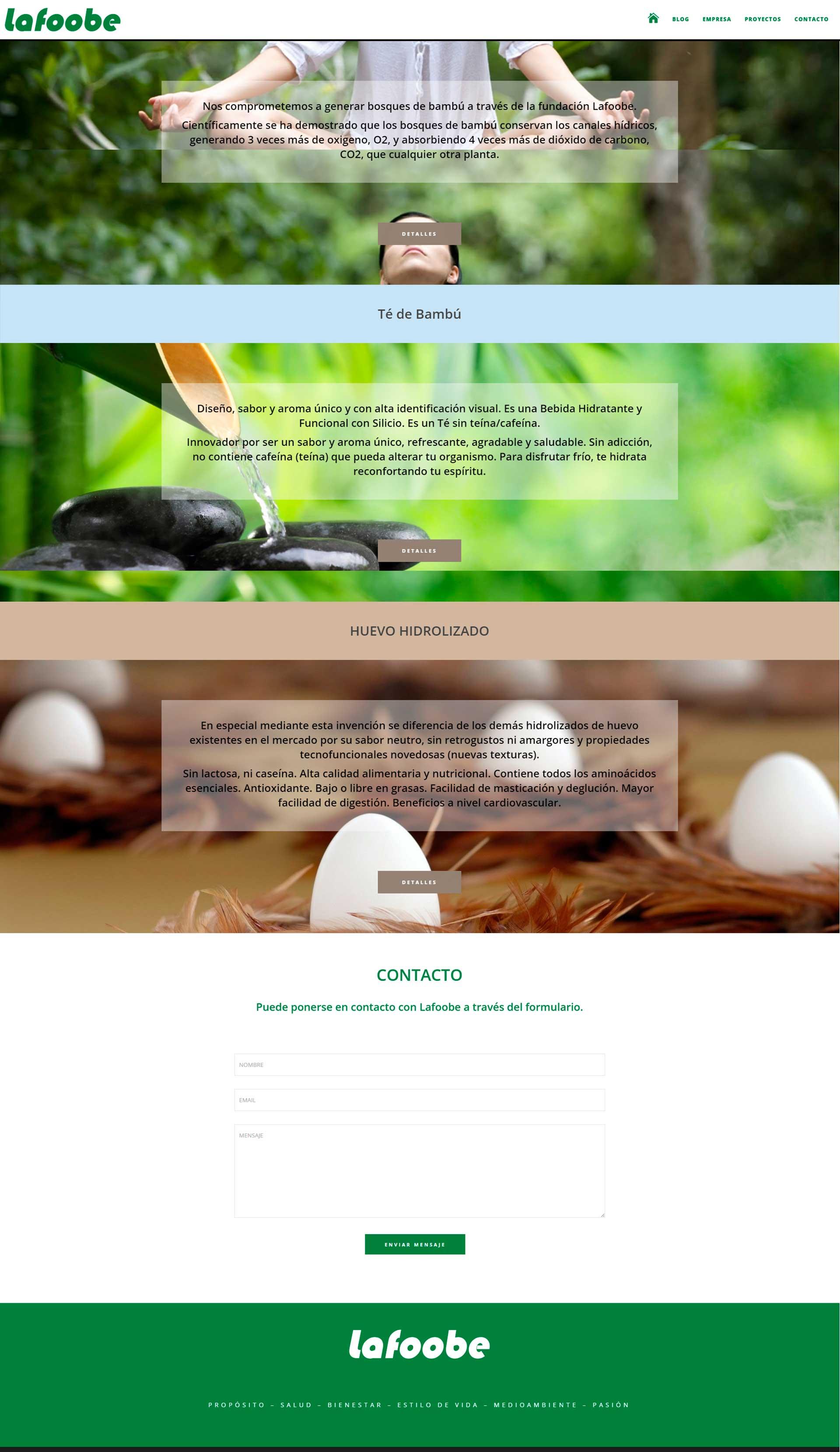 Nuevo Proyecto de Diseño Web, Lafoobe