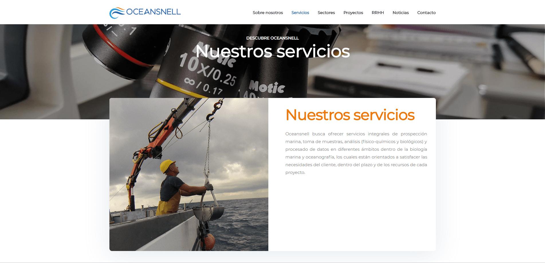 Desarrollo Web Oceansnell imagen 5
